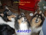 Collie Choice Award