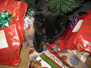 Scratchy under the tree with the presents