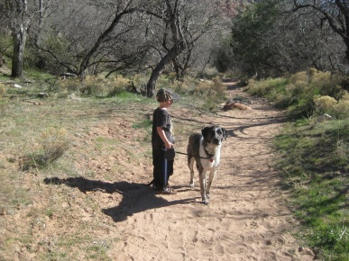 Little Friend and Bongo on the Trail