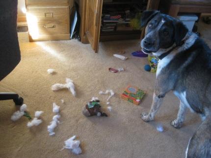 Bongo's Torn up Reindeer