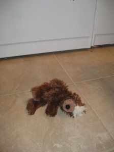 Toy bear in front of the washing machine