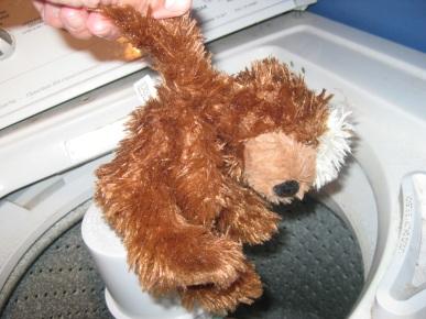 Bear in Washer