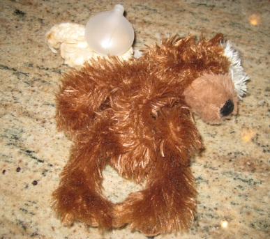 Toy bear missing insides