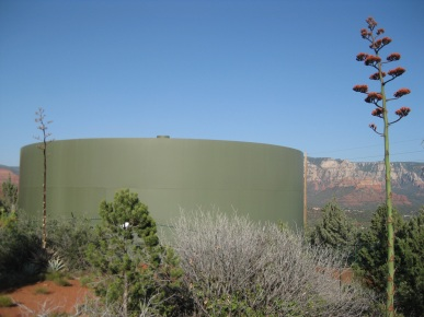 Water Tank and Century Plant