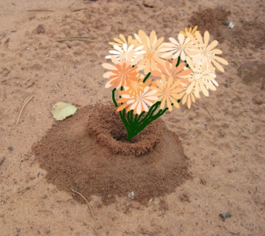 Ant hill with flowers in it