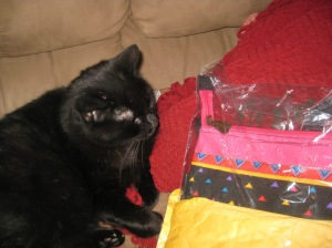 Scratchy and Bag in Package