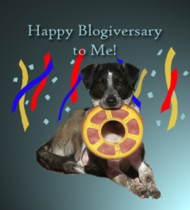 Bongo celebrating his Blogiversary