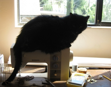 Scratchy on the Sewing Machine