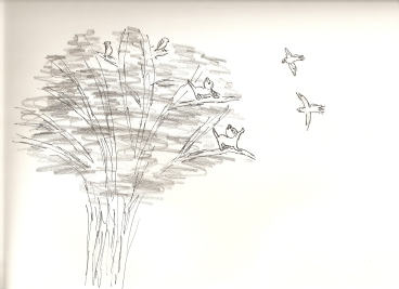 Kittens and Jays in a tree