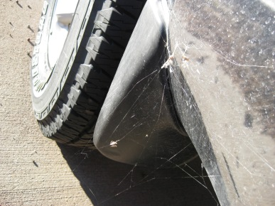 Spider webs attached to the 4Runner and ground