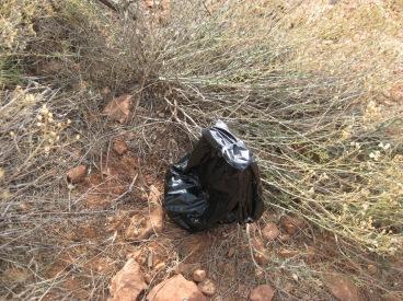 Little black bag in the bushes