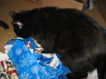 Scratchy on a pile of used wrapping paper