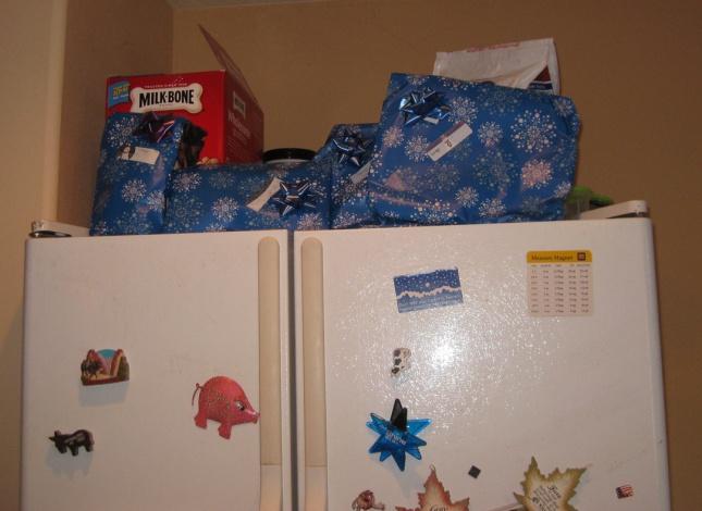 Bongo's presents on top of the fridge