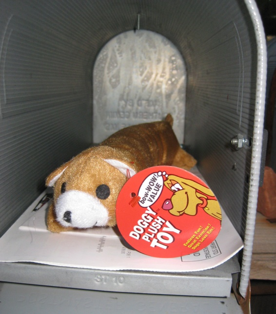 Dog toy inside a mailbox