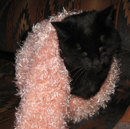 Scratchy wearing a pink scarf