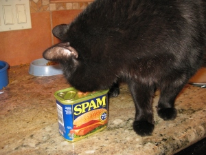 Scratchy and a Spam can