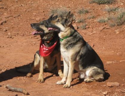 Lica and Kaiser