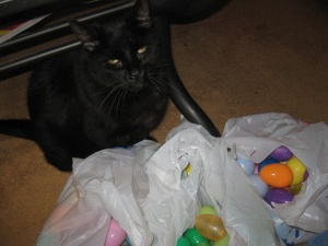 Scratchy with bags of plastic Easter eggs