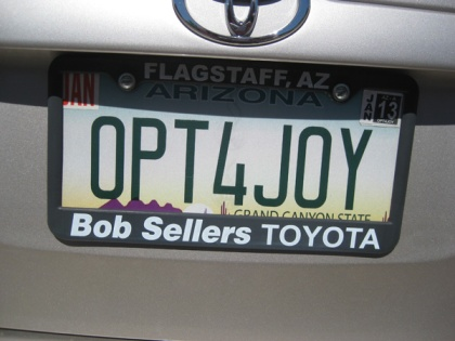 License plate OPT4JOY