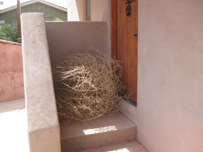 Tumbleweed at the door