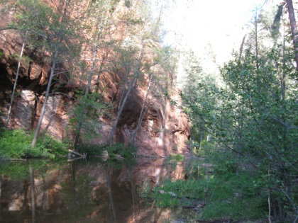 Creek, red cliff, and trees