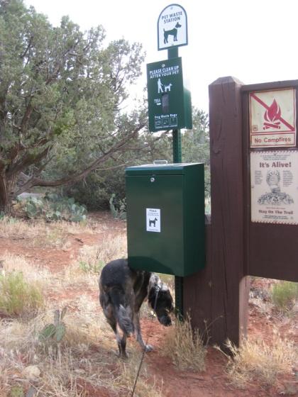 Bongo sniffing around Pet Waste Station