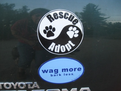 "Bumper stickers: ""Rescue Adopt"" ""Wag More Bark Less"""