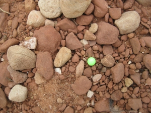 Tiny florescent yellow ball among red rocks