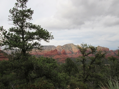 Sedona red rocks behind trees