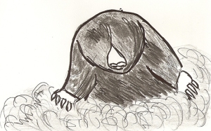 Drawing of a mole