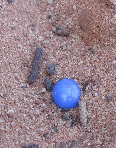 Blue airsoft pellet