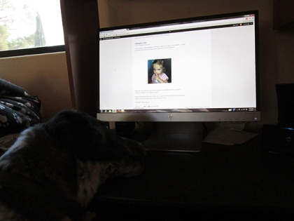 Bubba on the computer screen