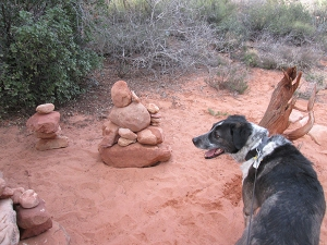 Rock piles and Bongo