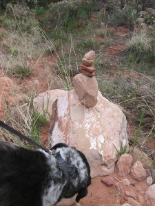 Bongo and a rock pile