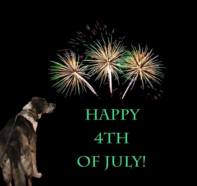 Bongo and fireworks