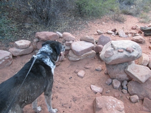 Bongo and a bunch of rocks