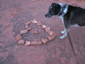Bongo and a heart shaped from rocks