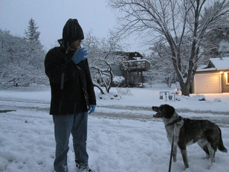 Bongo watching his younger person with a snowball