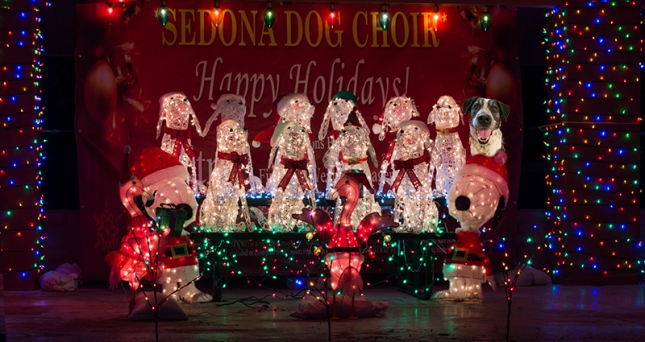 Sedona Dog Choir